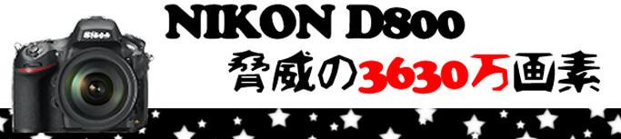 NIKONのD800